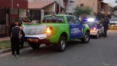 Photo of POLICÍA AMBIENTAL LIBERÓ SEIS AVES SILVESTRES TRAS UN ALLANAMIENTO